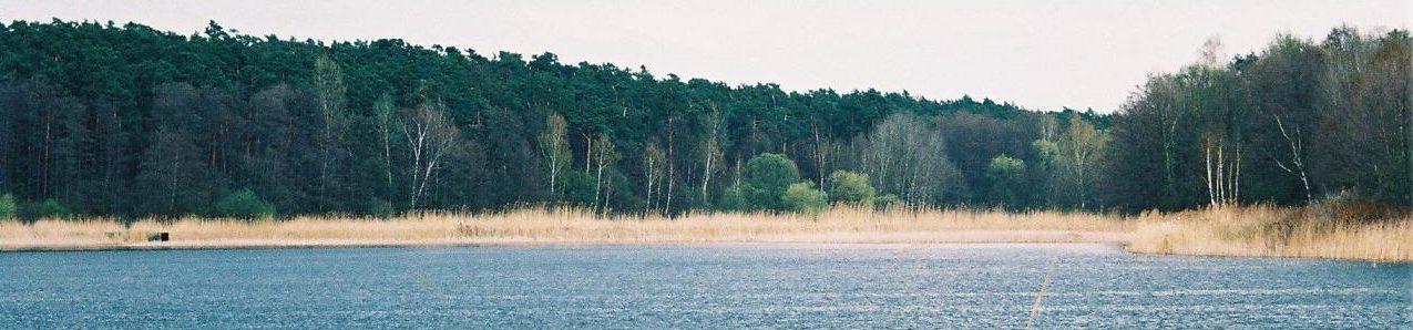 Żabieniec - nasze miejsce na ziemi